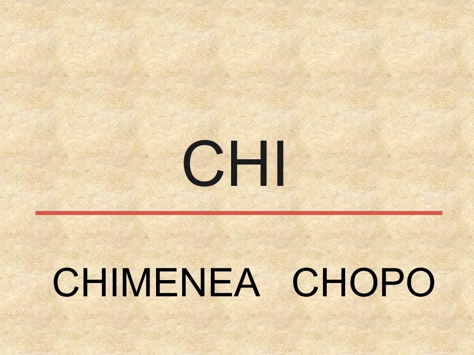 CHI CHIMENEA CHOPO