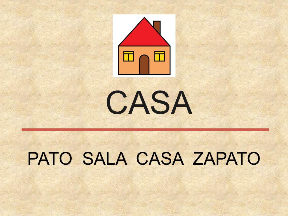 CASA PATO SALA CASA ZAPATO