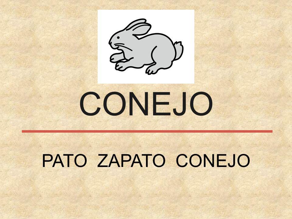 CONEJO PATO ZAPATO CONEJO