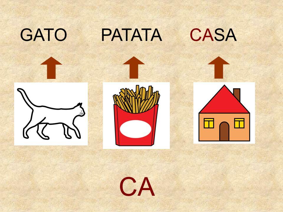 GATO PATATA CASA CA