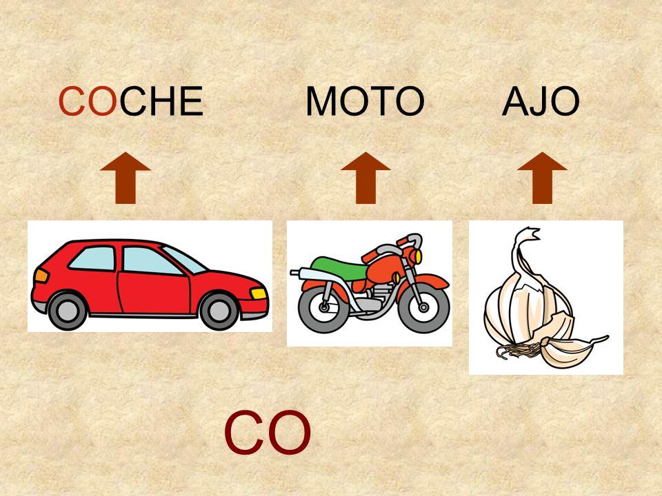 COCHE MOTO AJO CO