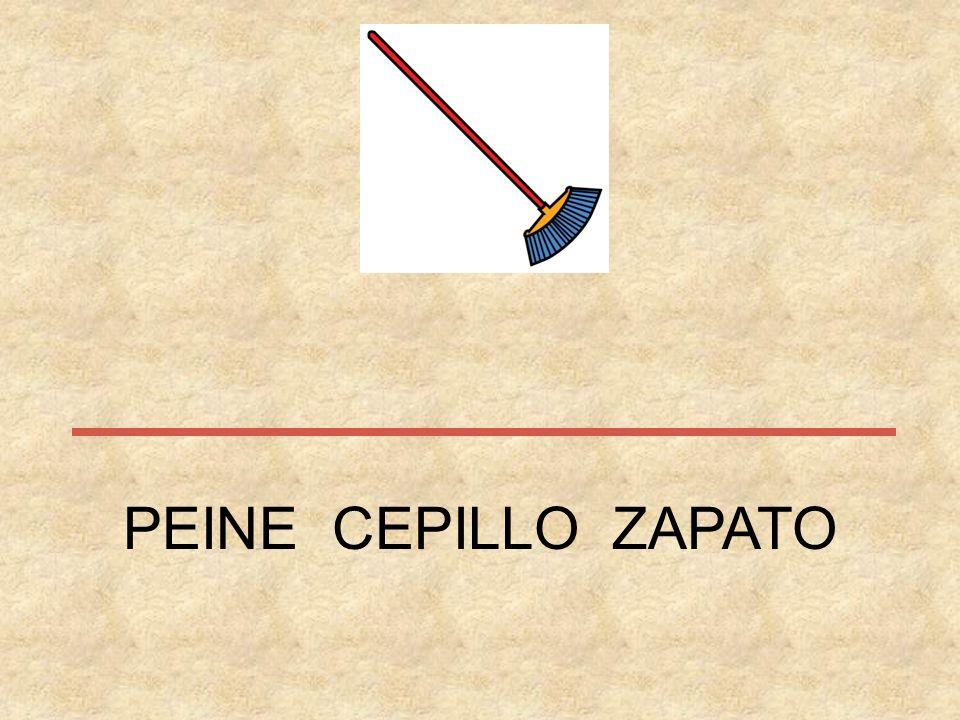 PEINE CEPILLO ZAPATO