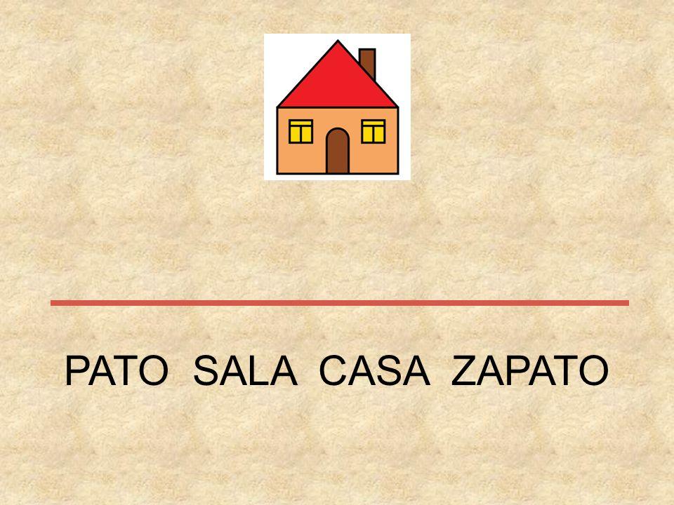 PATO SALA CASA ZAPATO