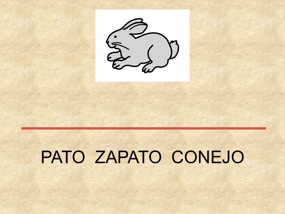 PATO ZAPATO CONEJO