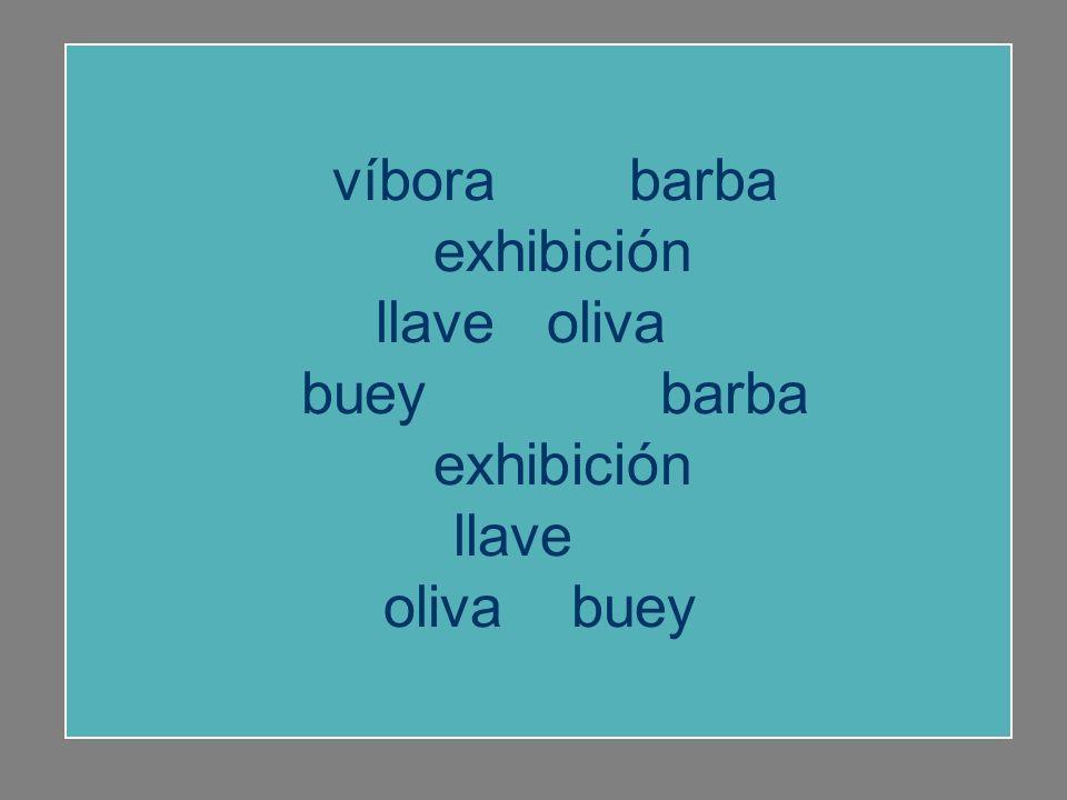 víbora barba exhibición llave oliva buey barba llave oliva buey