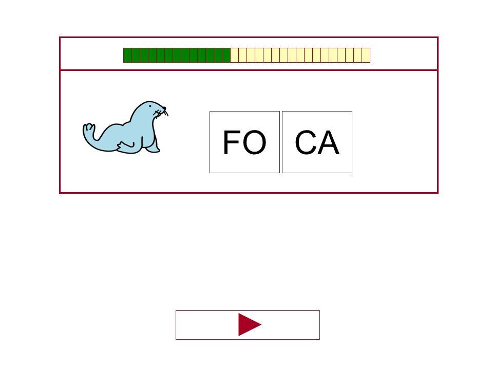 FO CA