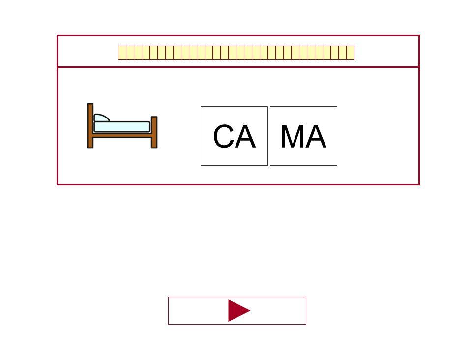 CA MA