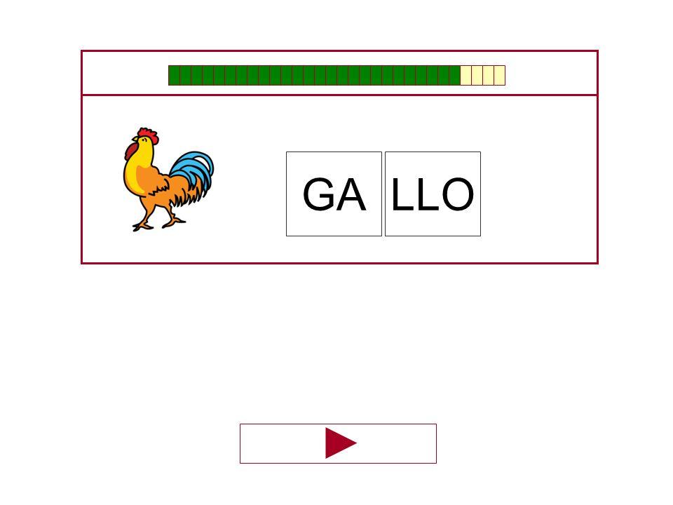 GA LLO