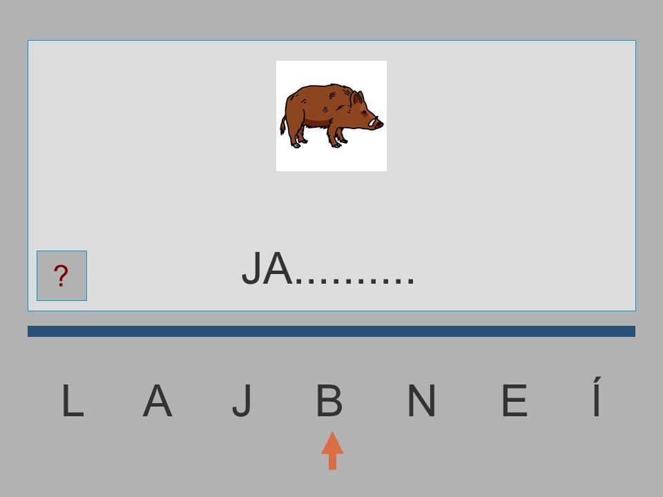 JA.......... L A J B N E Í