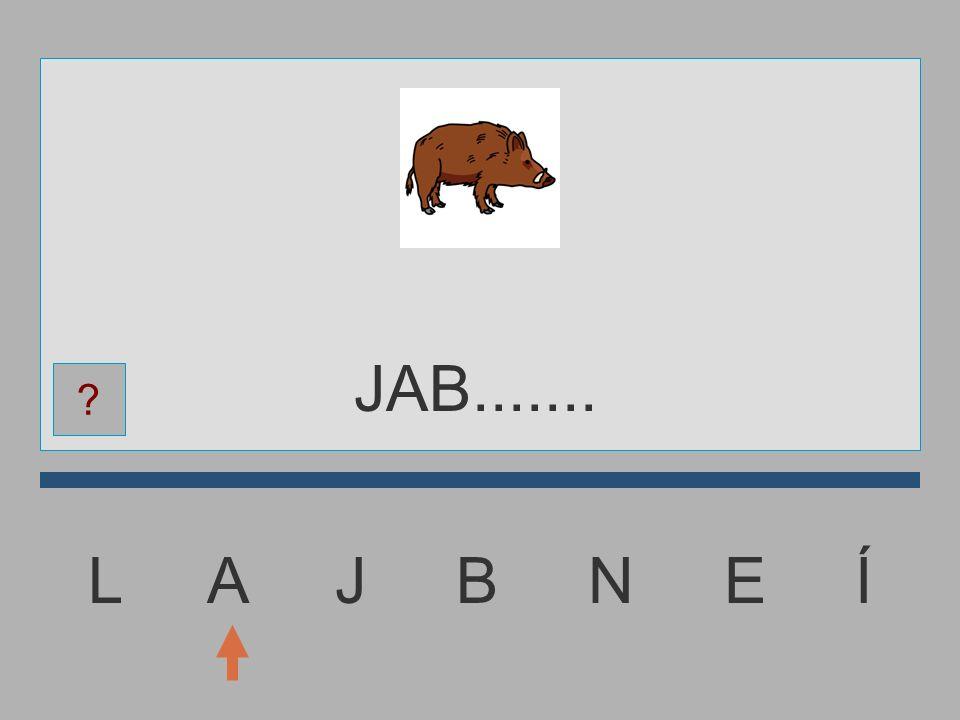 JAB....... L A J B N E Í