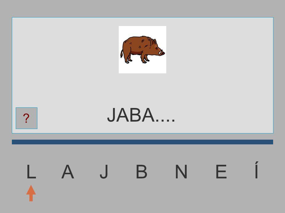 JABA.... L A J B N E Í