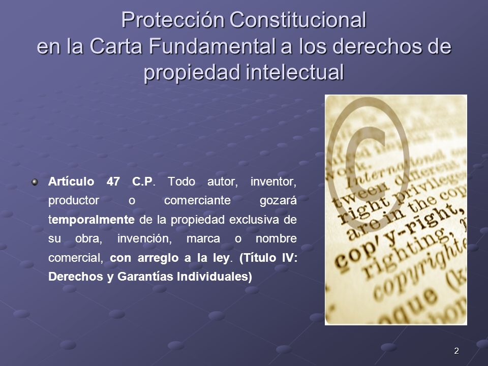 Protección Constitucional en la Carta Fundamental a los derechos de propiedad intelectual
