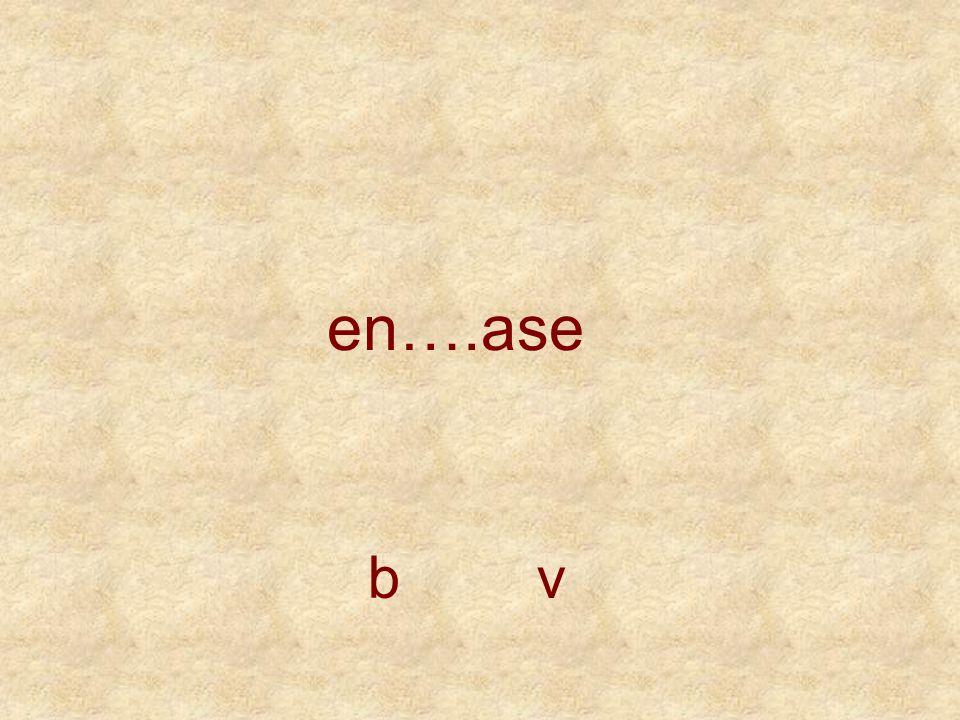 en….ase b v