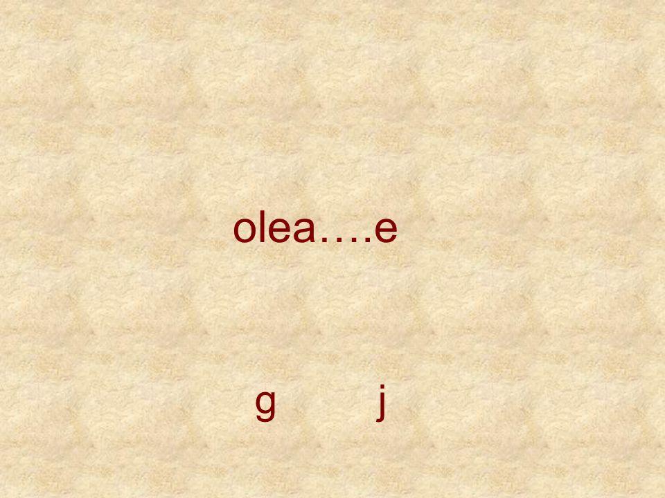 olea….e g j