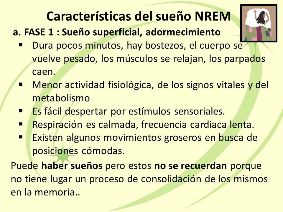 Características del sueño NREM