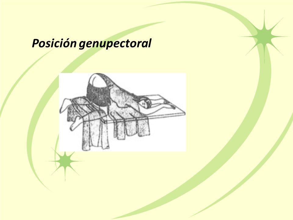 Posición genupectoral