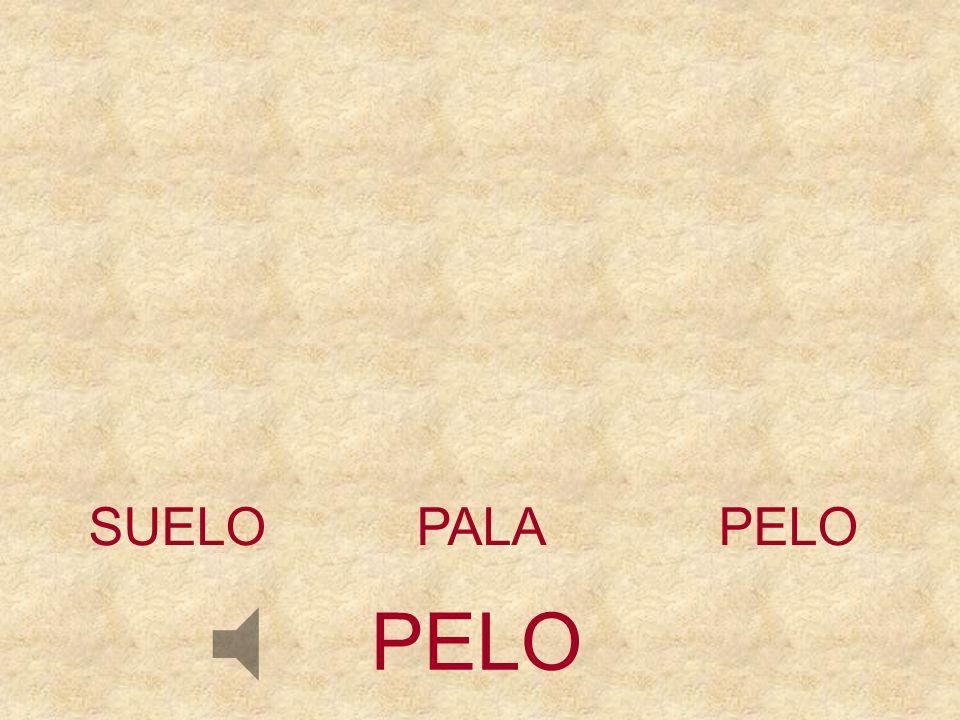 SUELO PALA PELO PELO