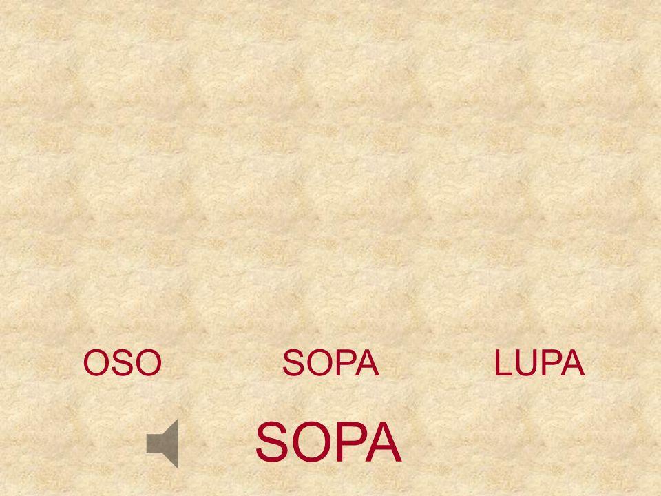 OSO SOPA LUPA SOPA