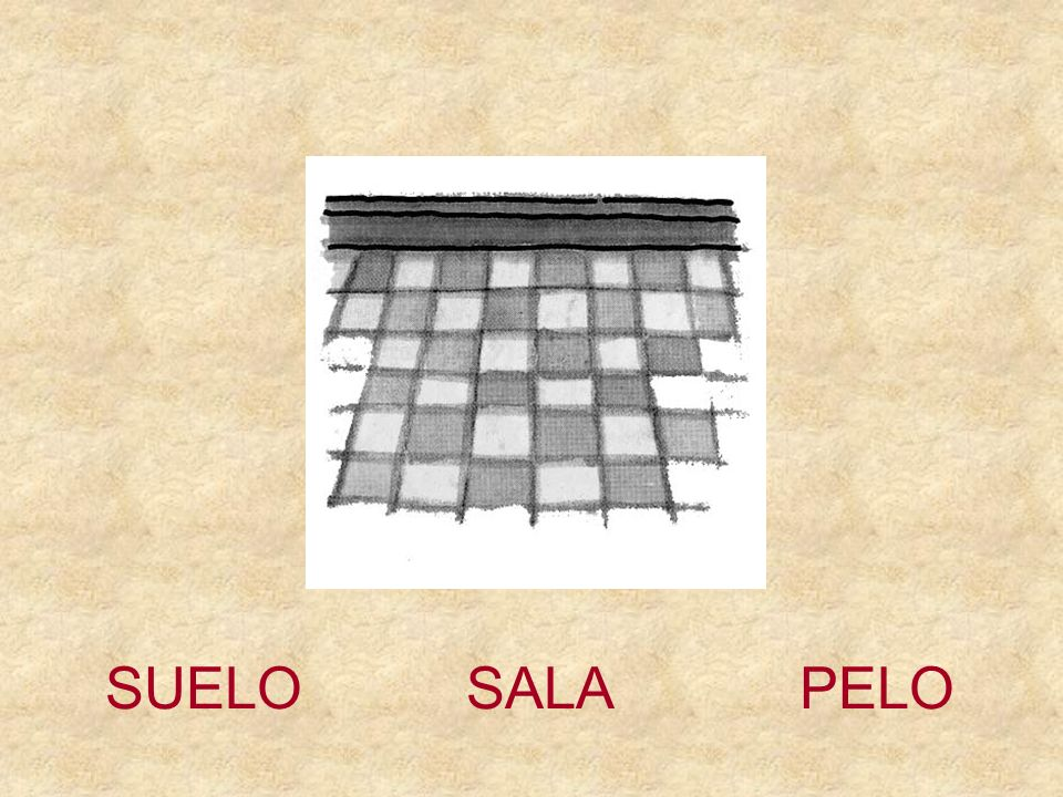 SUELO SALA PELO