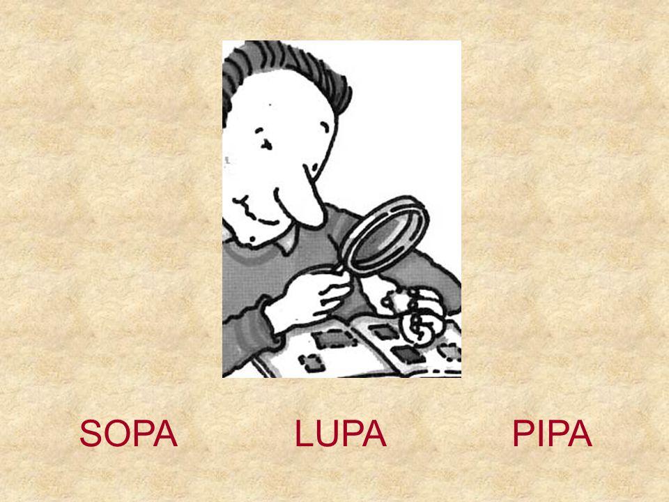 SOPA LUPA PIPA