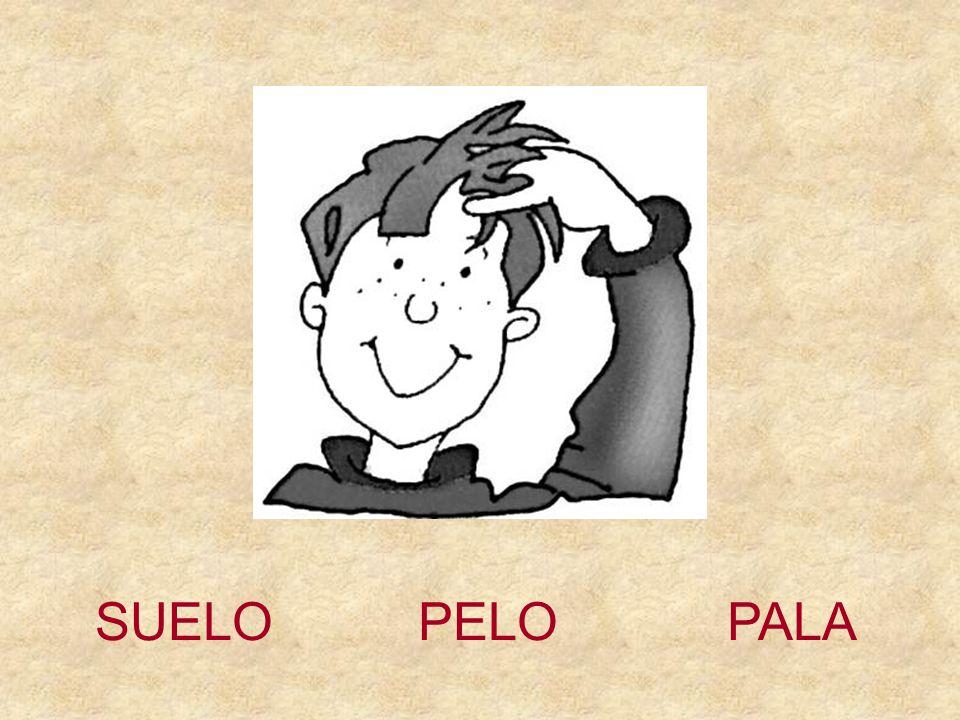 SUELO PELO PALA