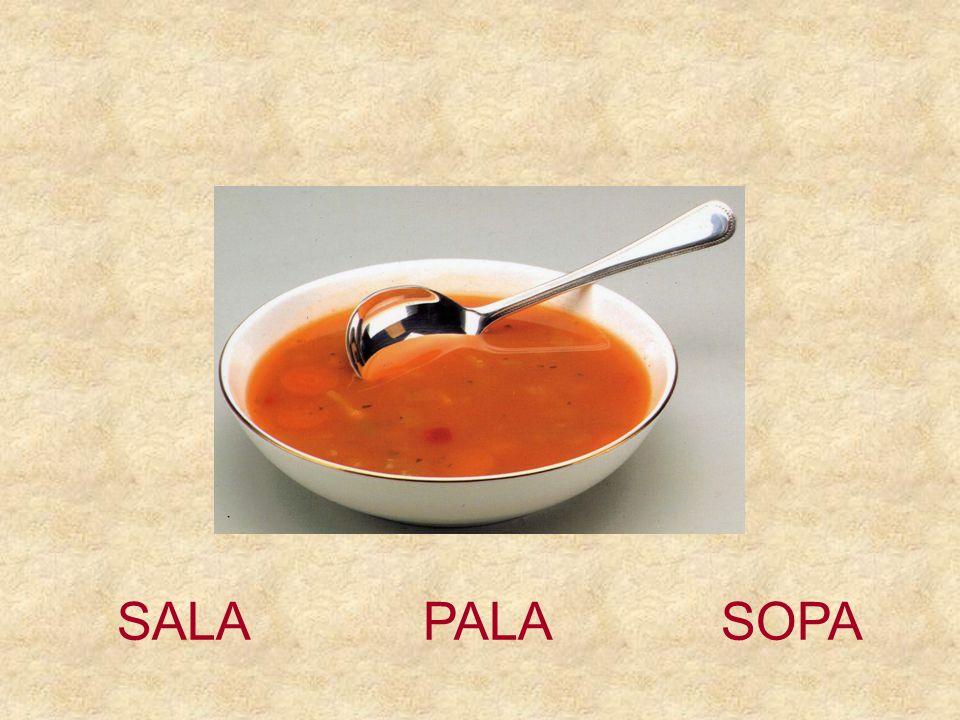 SALA PALA SOPA