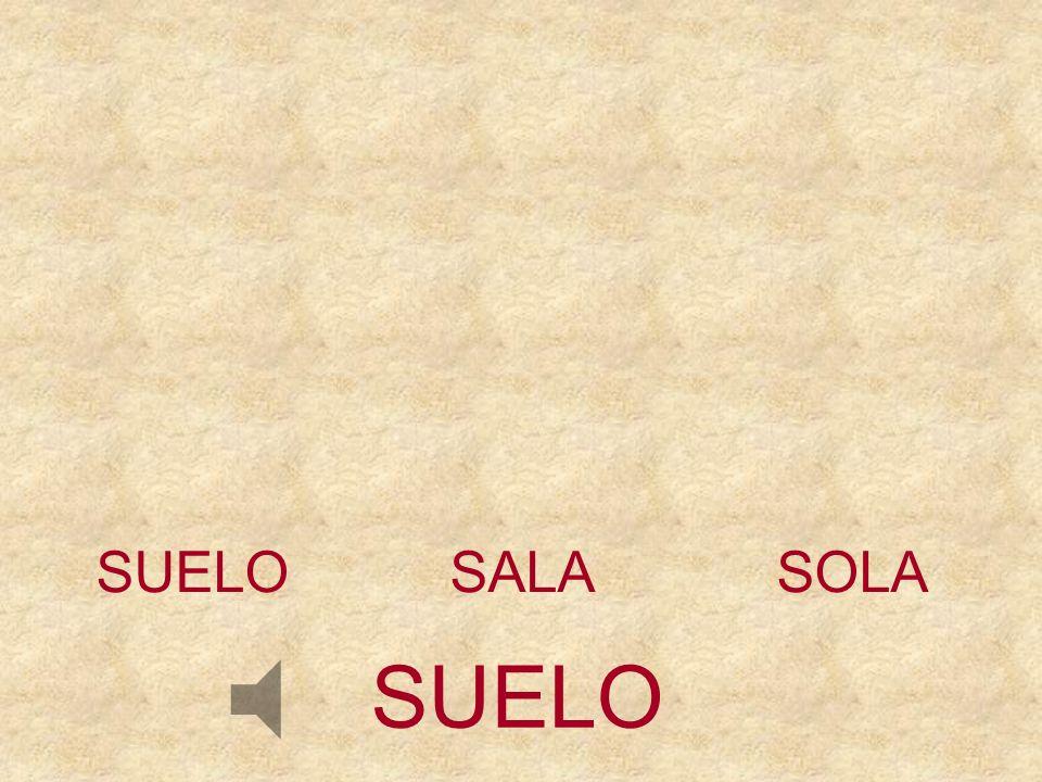 SUELO SALA SOLA SUELO