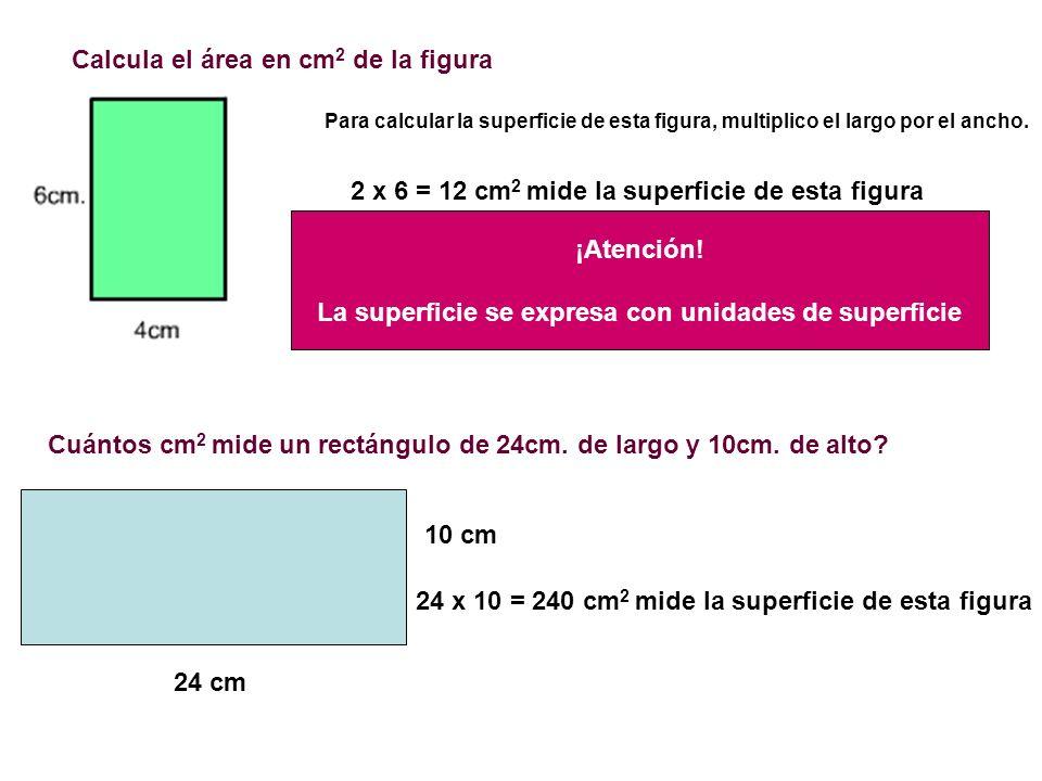 Calcula el área en cm2 de la figura