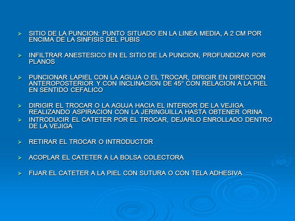 SITIO DE LA PUNCION: PUNTO SITUADO EN LA LINEA MEDIA, A 2 CM POR ENCIMA DE LA SINFISIS DEL PUBIS