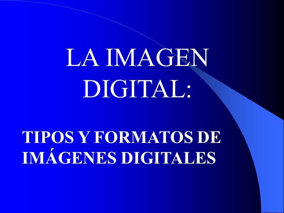 LA IMAGEN DIGITAL: TIPOS Y FORMATOS DE IMÁGENES DIGITALES