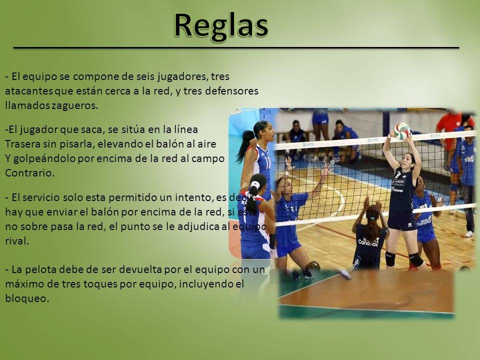 Reglas - El equipo se compone de seis jugadores, tres atacantes que están cerca a la red, y tres defensores llamados zagueros.