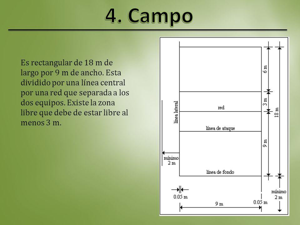 4. Campo