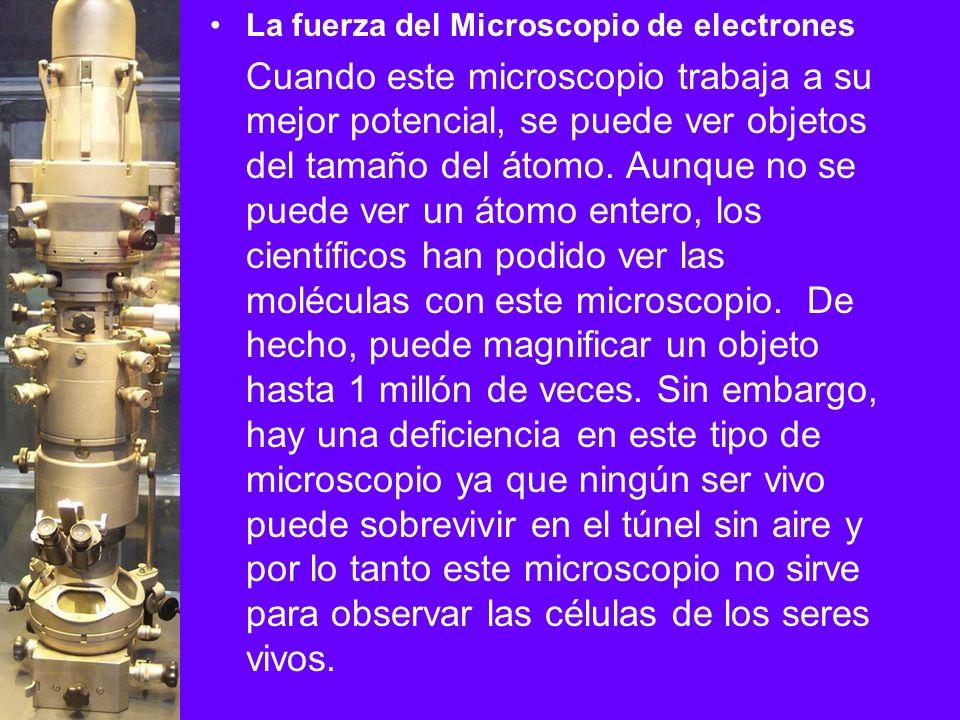 La fuerza del Microscopio de electrones
