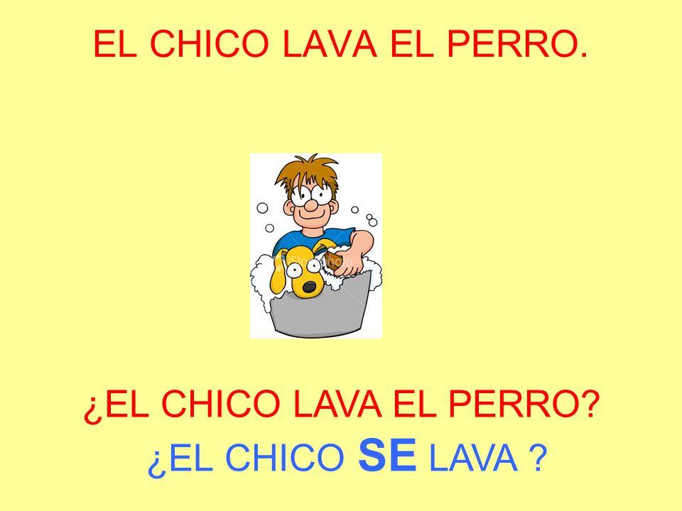 ¿EL CHICO LAVA EL PERRO ¿EL CHICO SE LAVA