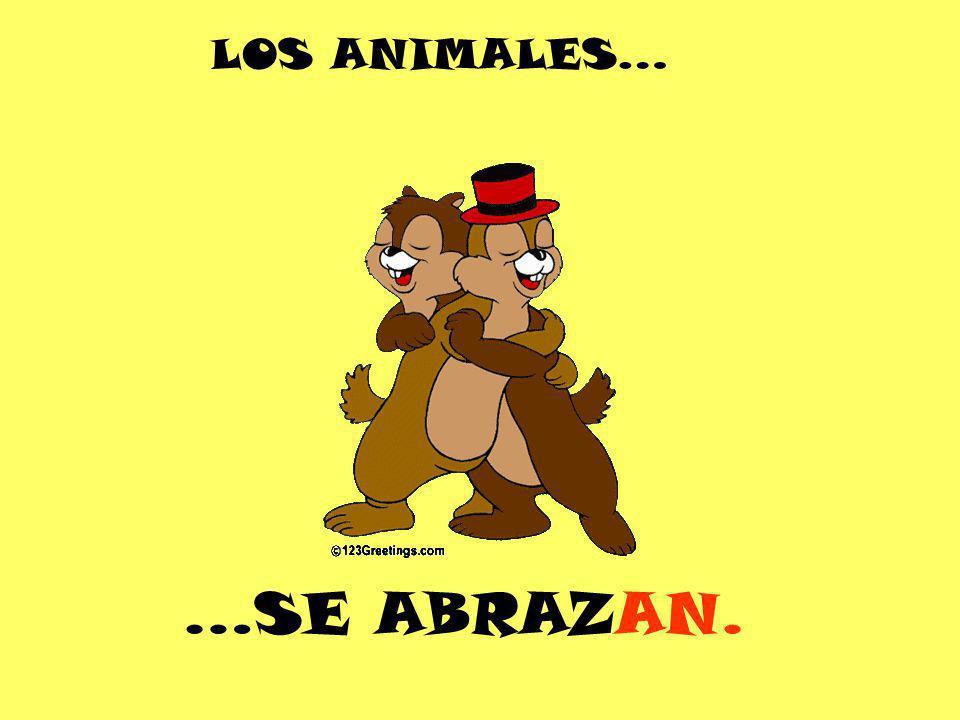 LOS ANIMALES… …SE ABRAZAN.