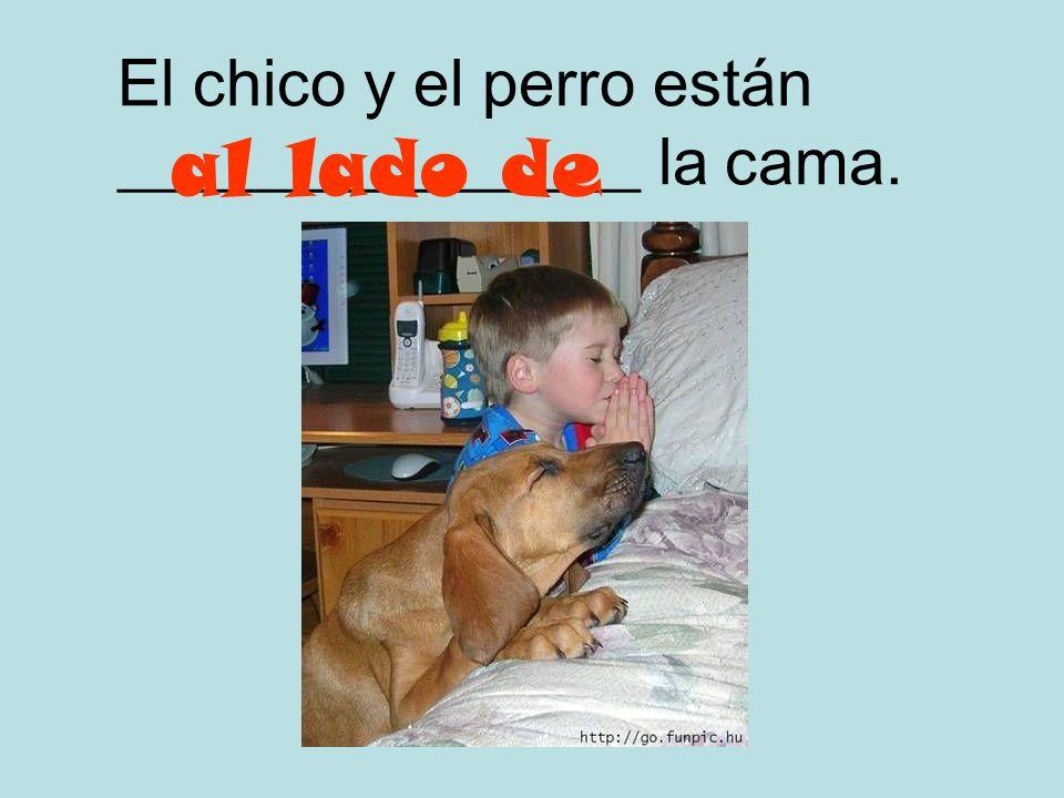 El chico y el perro están ________________ la cama.