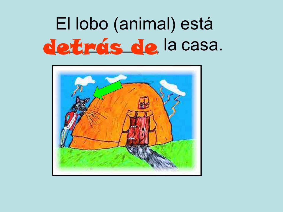 El lobo (animal) está _____________ la casa.