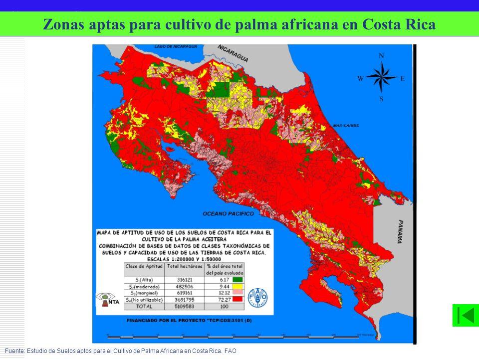 Zonas aptas para cultivo de palma africana en Costa Rica