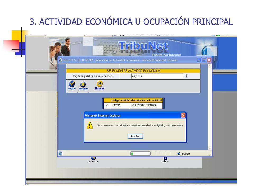 3. ACTIVIDAD ECONÓMICA U OCUPACIÓN PRINCIPAL