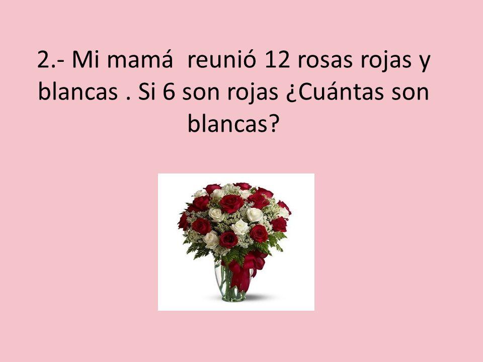 2. - Mi mamá reunió 12 rosas rojas y blancas