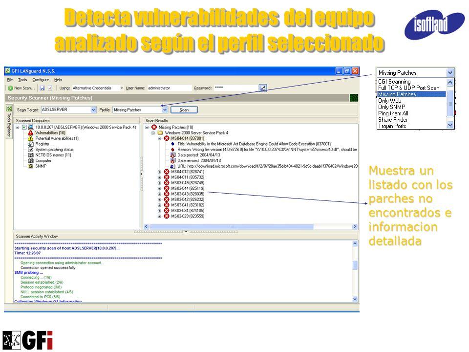 Detecta vulnerabilidades del equipo analizado según el perfil seleccionado