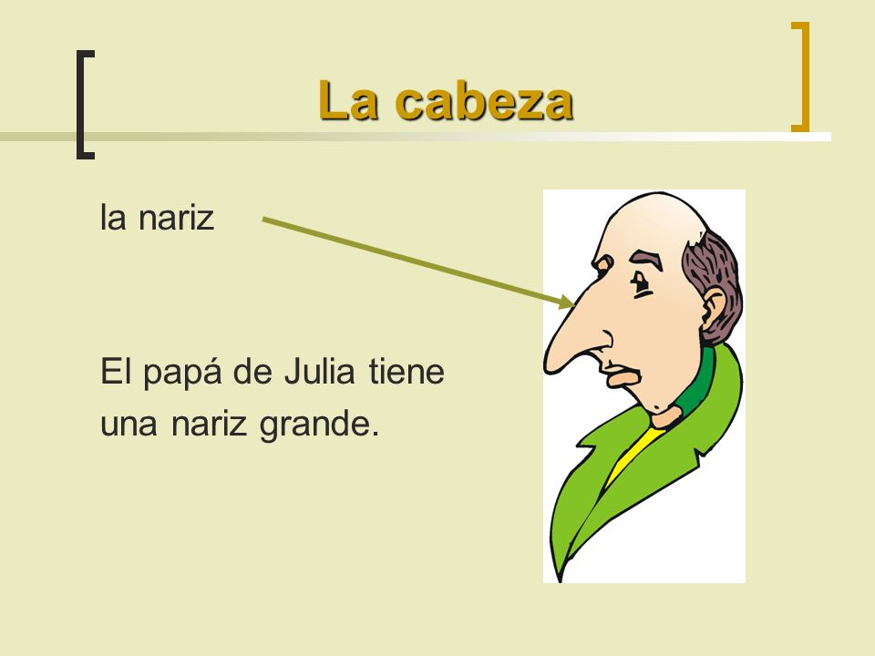 La cabeza la nariz El papá de Julia tiene una nariz grande.