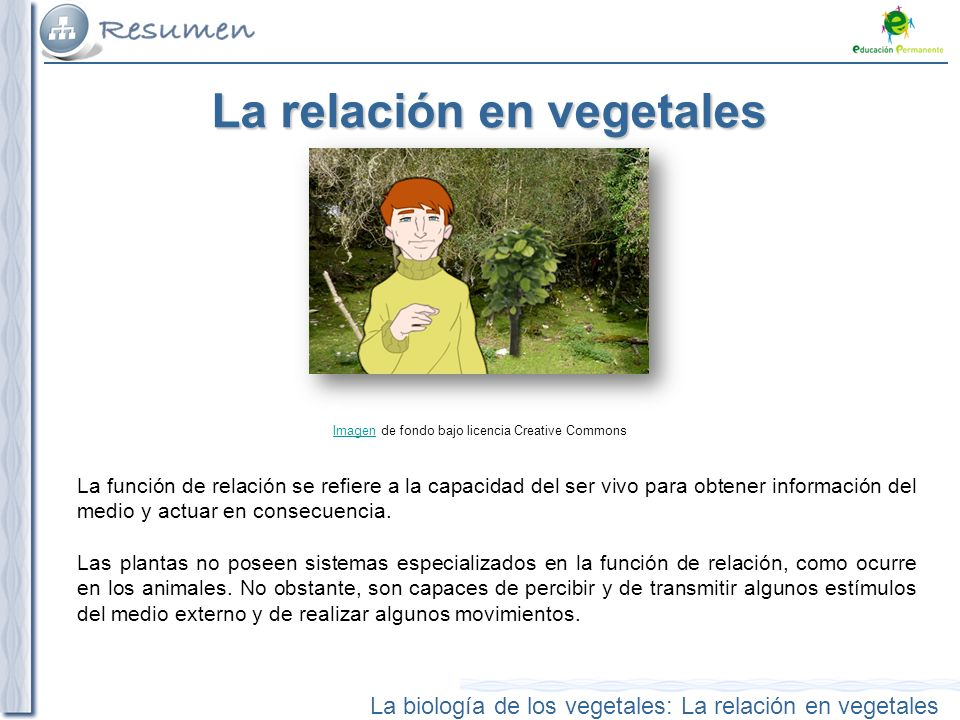 La relación en vegetales