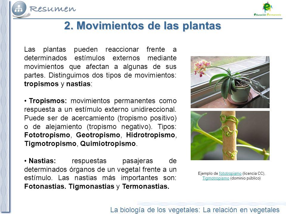 2. Movimientos de las plantas