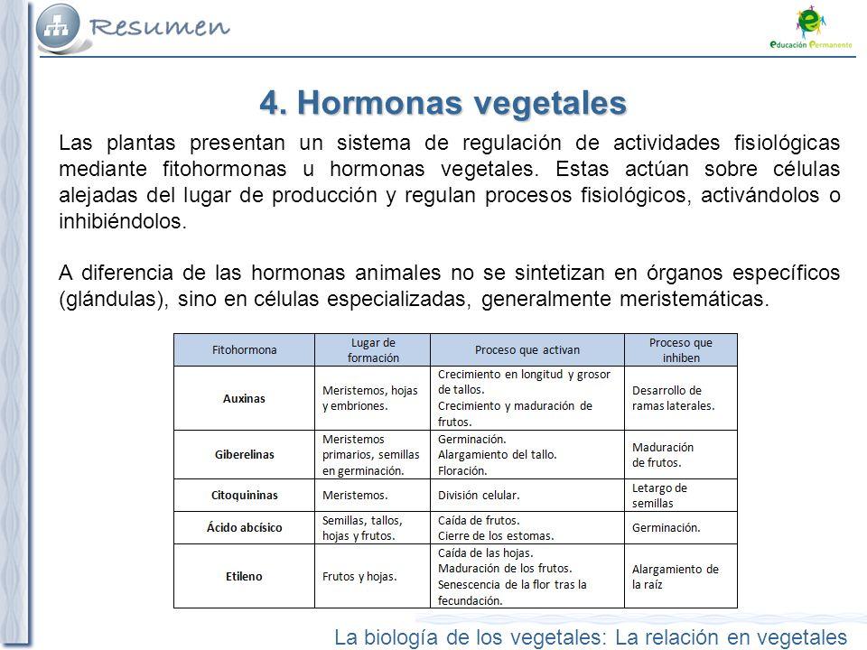 4. Hormonas vegetales