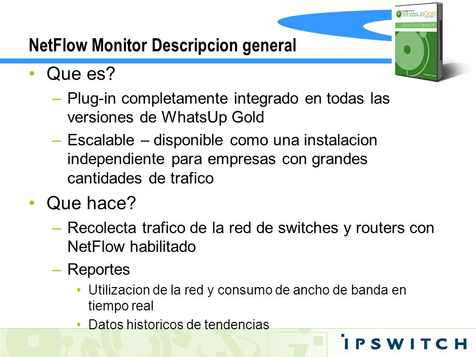 NetFlow Monitor Descripcion general