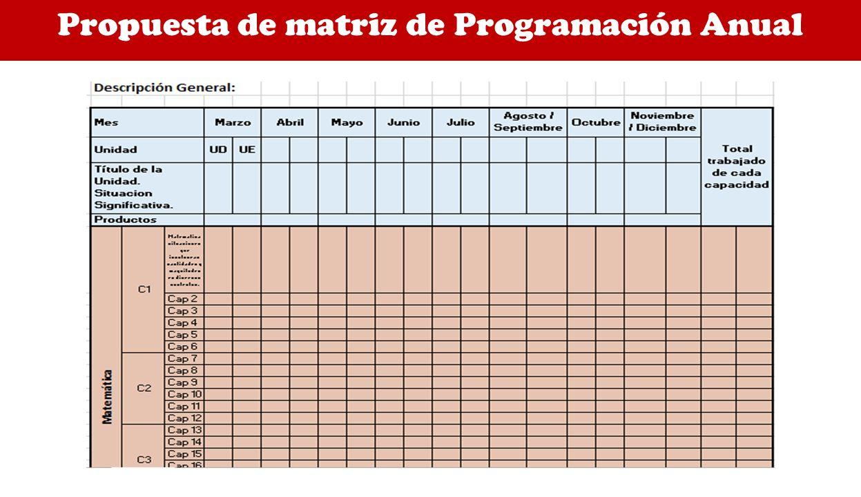 Propuesta de matriz de Programación Anual