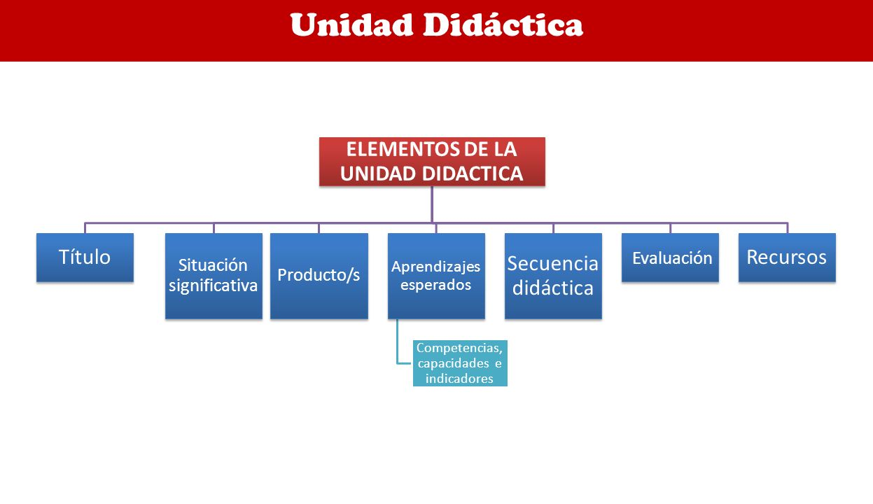 ELEMENTOS DE LA UNIDAD DIDACTICA