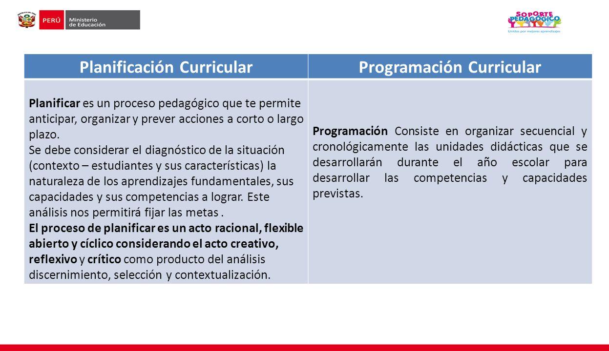 Planificación Curricular Programación Curricular
