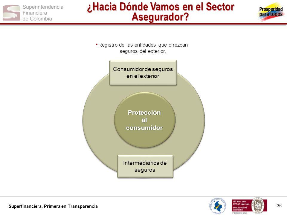 ¿Hacia Dónde Vamos en el Sector Asegurador Protección al consumidor